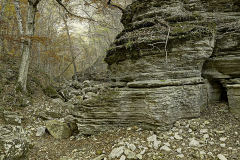 Arkansas 2011