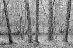 North Carolina 1987